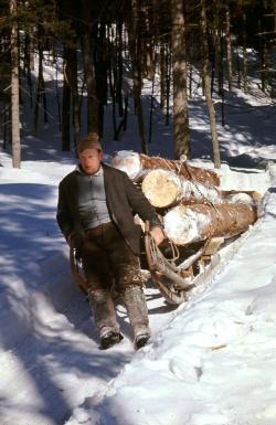 Der winterliche Schlittenzug zum Holztransport verlangte von den Holzhauern im unwegsamen Terrain des Bayerischen Waldes viel Geschick und Kraft. Wie sie dieses harte Leben bewältigten, ist Thema des kommenden Erzählcafés im Glasmuseum Frauenau. (NPV Bayerischer Wald)