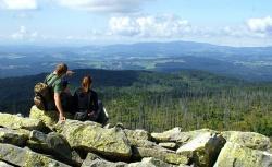 Der Nationalpark Bayerischer Wald ist ein Besuchermagnet und entscheidender Faktor für positive Urlaubs- und Erlebnisqualität in der Region. 96 % der Besucher sind laut Befragung mit dem Nationalpark als Erholungsgebiet zufrieden oder sehr zufrieden.