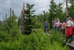 Nationalpark-Leiter Dr. Leibl im Gespräch mit Lehrern der Nationalpark-Schulen bei einem Waldbegang am Lusen. Bildautor: NPV
