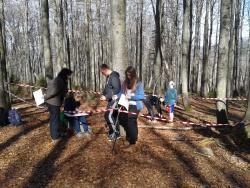 Schüler der Klasse 8a der Mittelschule Zwiesel erforschen unter Anleitung von Waldführerin Marianne Melch die Wälder an den Hängen des Lusen. Bildautor: Mittelschule Zwiesel