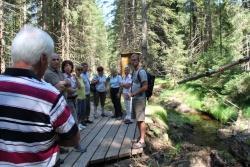 Nationalparkmitarbeiter Jan Vančura (rechts) zeigte den Nationalpark-Partnern den renaturierten Waldhüttenbach bei Spiegelau. Foto: NPV