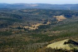 Die Vision eines grenzüberschreitenden Urwalds: Beim Blick über den gefallenen Eisernen Vorhang im Lusental (Luzenské údolí) wird sie offensichtlich. Luftbild: Dr. Franz Leibl, NPV BW