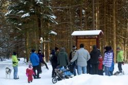 Am 26. Dezember startet das Weihnachtsferienprogramm der Nationalparkverwaltung Bayerischer Wald. Für Groß und Klein sind jede Menge Veranstaltungen geboten, die die Wintermüdigkeit vergessen lassen. Bild(er): NPV BW